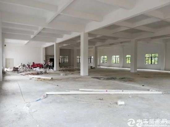 龙岗坪地独栋全新厂房1000平米