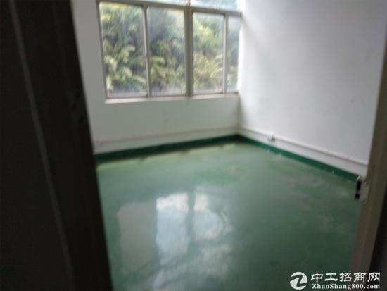 布吉三联村一楼260平米、362平米出租可分租
