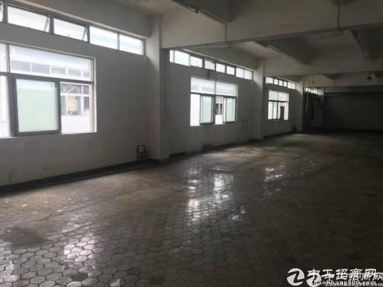 惠阳新圩358省道边空置770平米靠山边没居民