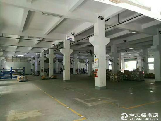 龙岗坪地450平一楼带装修厂房出租高6米空地大
