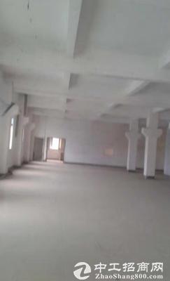 东方大道花园式独院1200平厂房,带办公室
