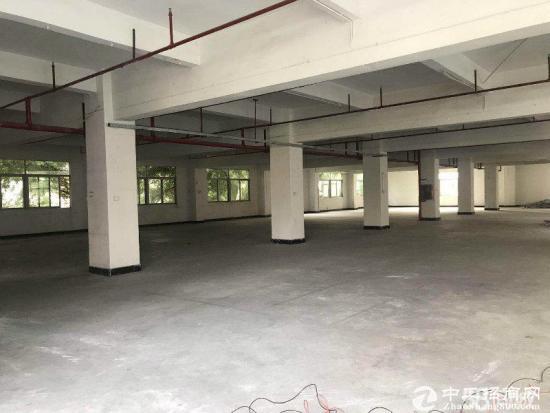 横岗六约一二楼950平米1500平带装修厂房出租