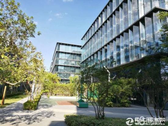 龙岗宝龙高新园区独栋小型300平办公楼出租