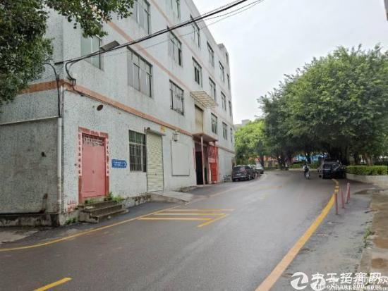 龙岗龙东独栋厂房2楼整层450平招租