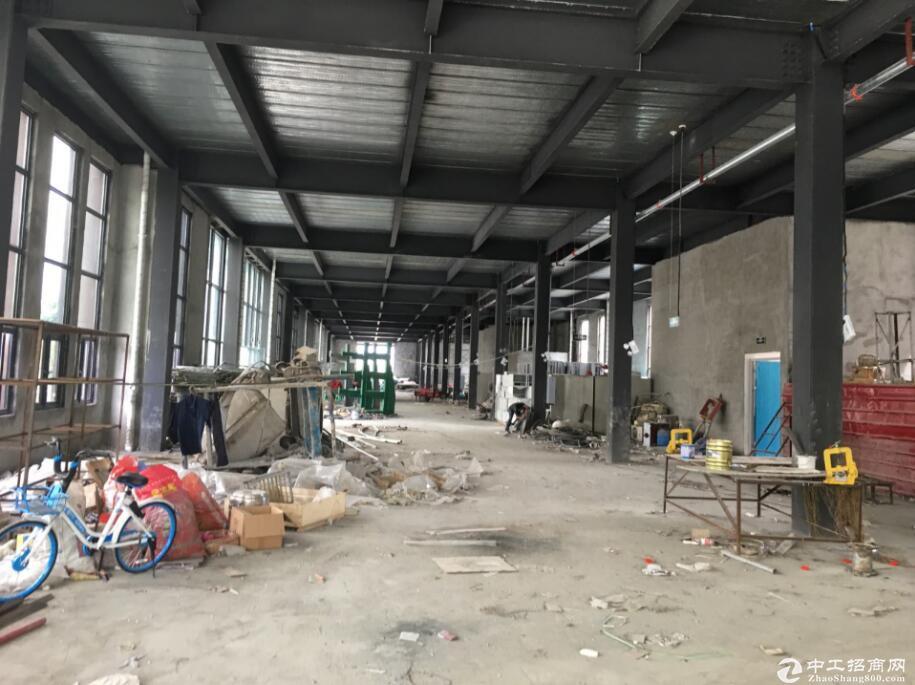郫县现代工业港,全新标准钢结构厂房,1200出租