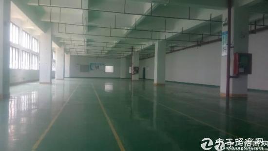 平湖原房红本东独门独院22000平方隆重招商,可分