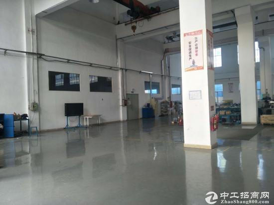 10米高标准厂房 2300平合同5年