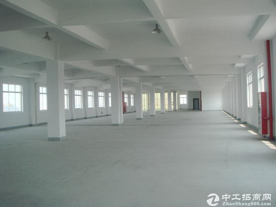 大朗独门独院带牛角厂房12500平方米出租