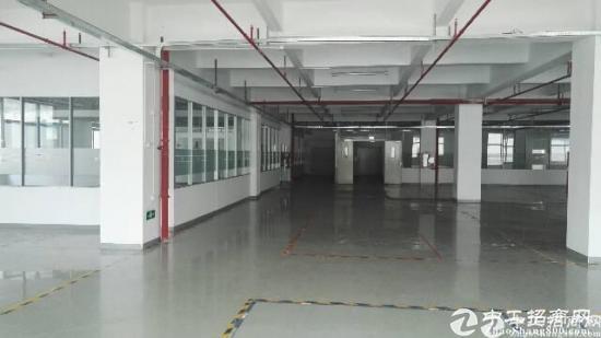 石岩汽车站附近一二楼新出8000平米厂房出租
