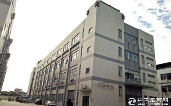 圳美一楼1350平,可分租