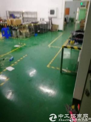 横岗大康 工业园厂房1880平米带地坪漆 可分租