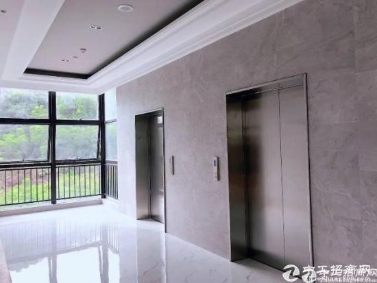 坪地红本高新技术产业园区30000平  精装修出租-图2
