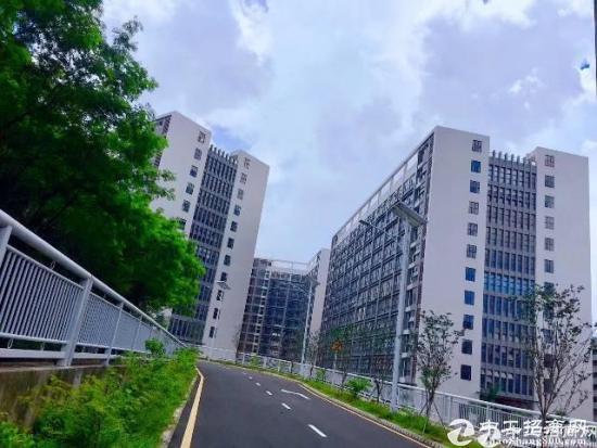 坪地红本高新技术产业园区30000平  精装修出租-图4