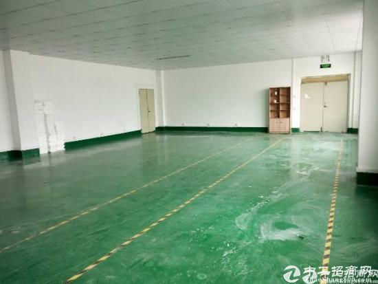 横岗沙荷路边上一楼面积3500平米厂房招租