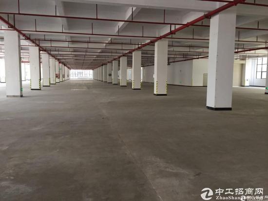 仲恺高新区大型工业园区独栋标准厂房10000平