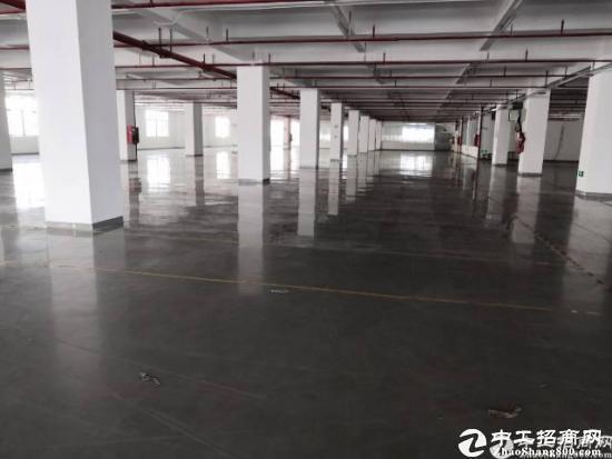 大型物流园带喷淋5000平方整层仓库出租