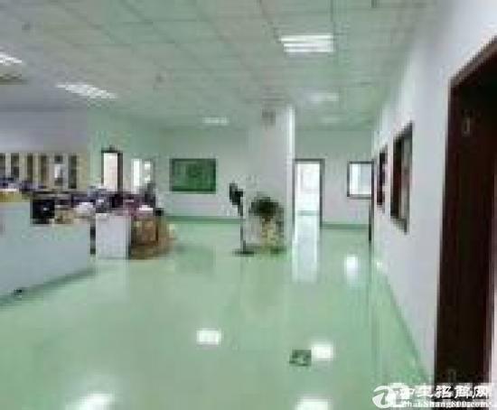 布吉上李朗工业区原业主新出独栋大小5440平方可以分租
