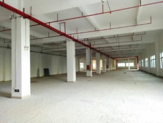 龙岗坪山大工业区旁独门独院厂1-5层15000
