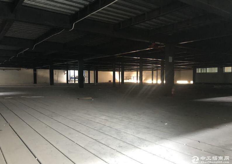 新都泰兴镇 6500㎡厂房出售 通水电可排污