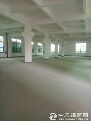 平湖华南城附近一楼2000平方8米高标准厂房出租