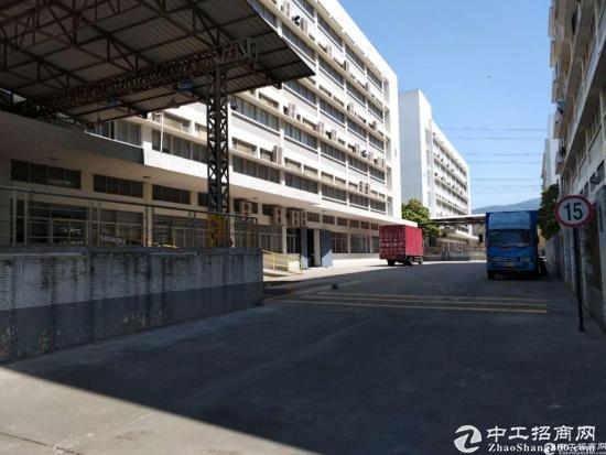 塘头一楼仓库2000平带卸货平台,层高6