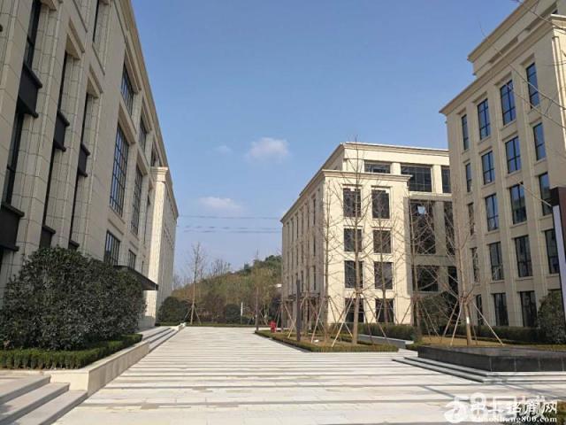 两江健康科技城独栋厂房租售