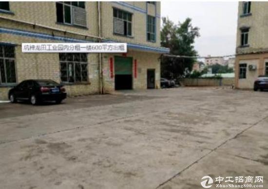 坑梓龙田工业园内分租一楼600平方出租