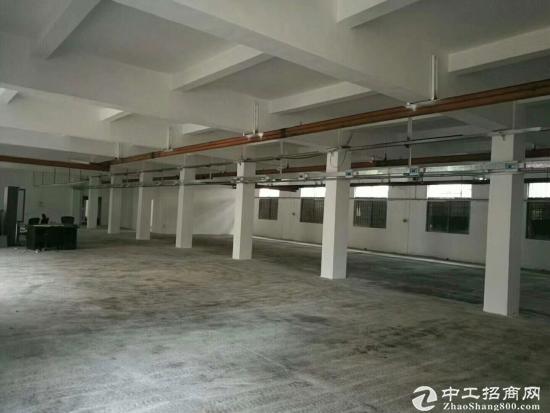 坑梓 秀新工业园独院厂房3200平米实际面积出租