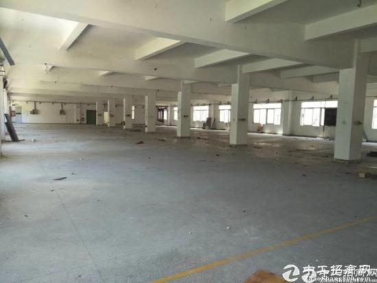 中心城超大空地独院厂房9500平米招租可分租