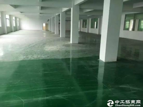 [深圳厂房]坪山大工业区高速口3000平整层厂房出租