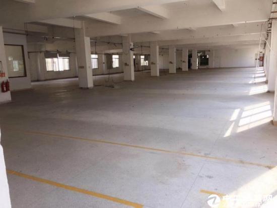 [龙岗厂房]龙岗宝龙独栋6300平米标准厂房出租