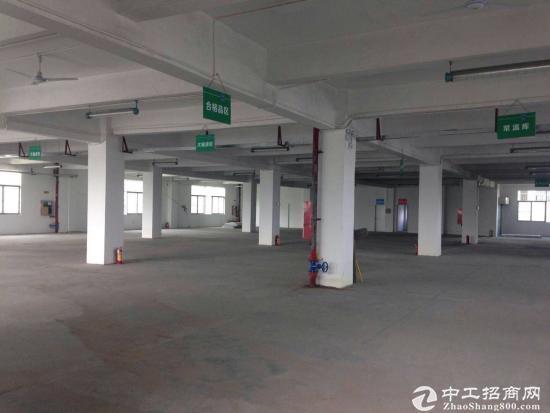 平湖独院厂房10000平米出租