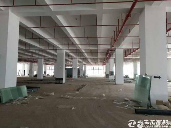 龙岗宝龙高新区2楼分租1000平,带精装修