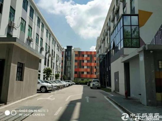 坑梓新出原房东3楼整层700平厂房