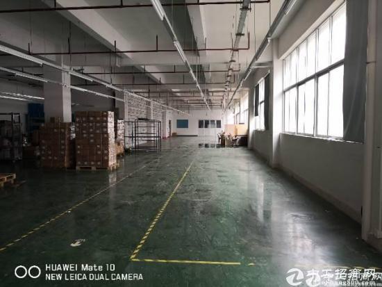 石岩水田高速口高大尚园区新出厂房650㎡带精装办