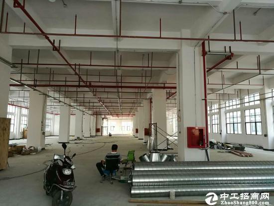 沙井高速路口独院11000平米厂房带装修可大小分租