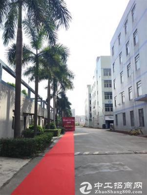 坂田雪象医院附近新出一楼5200平米厂房出租