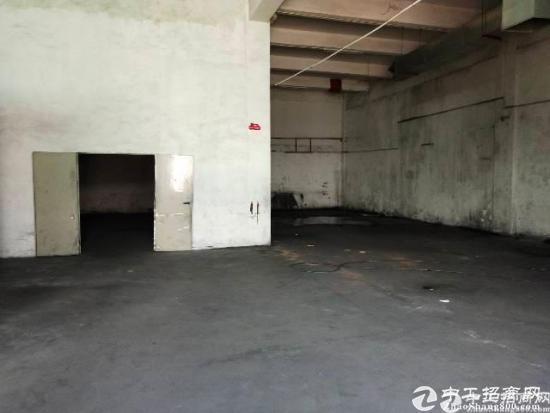 龙田大窝新空出1楼600平方实用面积出租