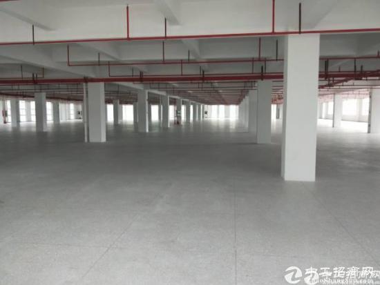 龙岗中心宝龙新出印刷厂8000平出租。