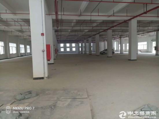 东莞茶山镇全新原房东标准厂房10800㎡出租