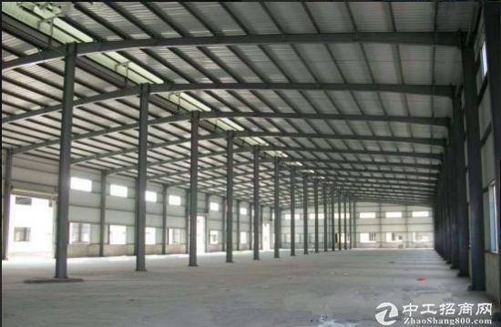 白石厦全新钢构厂房5180平方,滴水9米,可分租