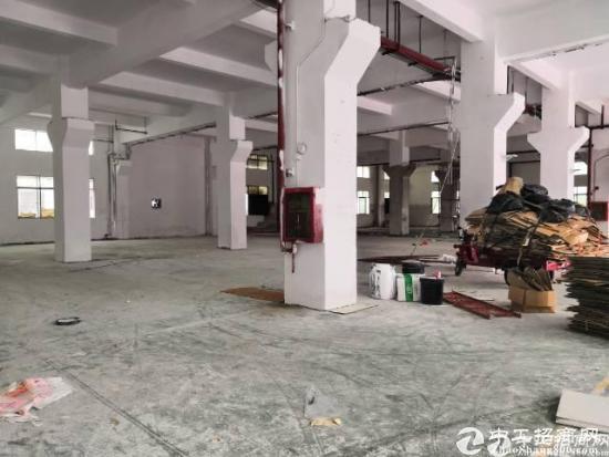 石岩龙大高速独门独院一楼2000平方出租