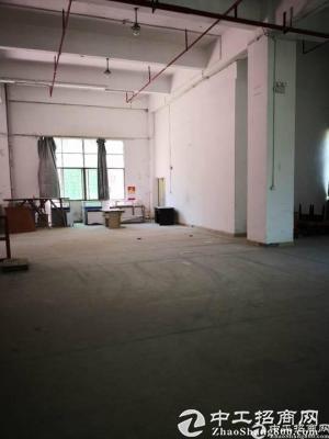 布吉南湾街道新出一楼原房东厂房1000平出租