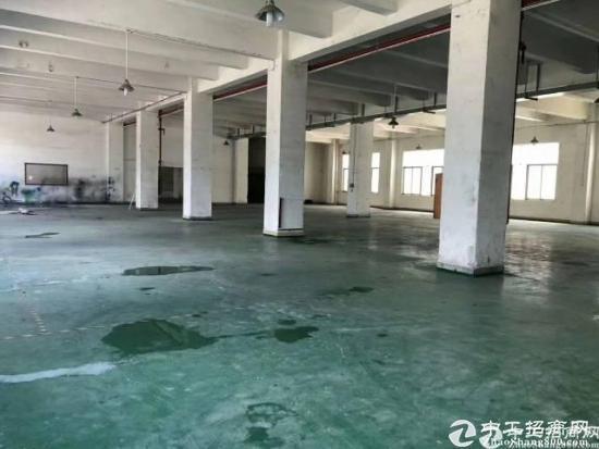 布吉丹竹头新出1楼1600平方厂房