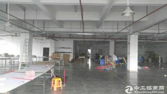 龙华街道军龙医院旁办公室整层2800平,1100平方1700平起分