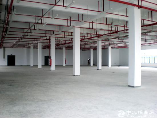 谢岗原房东独院一楼6米就标准厂房