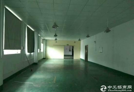 富民独院3层4000平米低价出租可分租