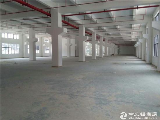 谢岗独栋花园式厂房1-2层3100平,一楼7米高