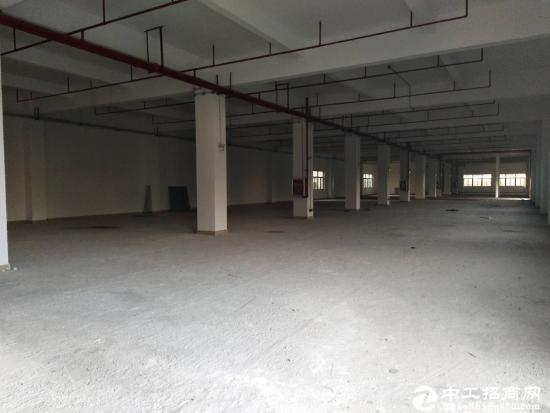 坪山坑梓新出红本厂房一楼1500平招租 可分租