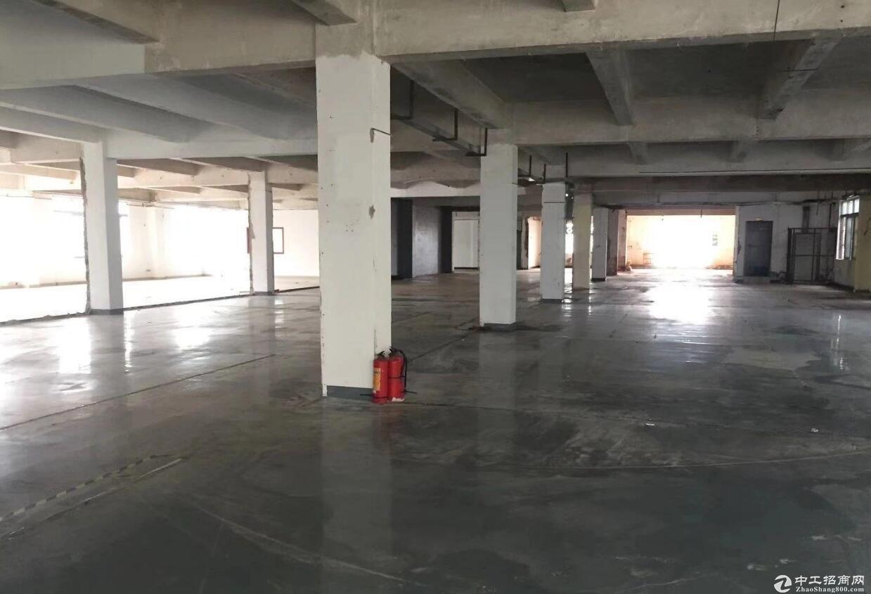 青白江工业园新出920平方工业厂房出租 采光好